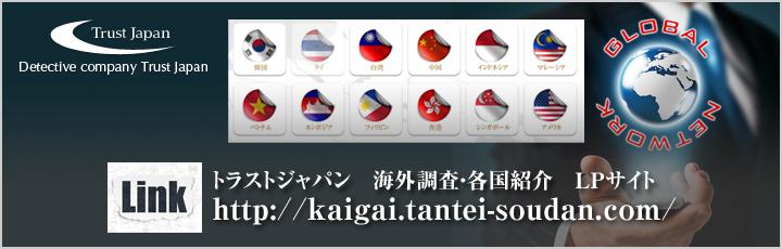 各国紹介サイト LPサイト